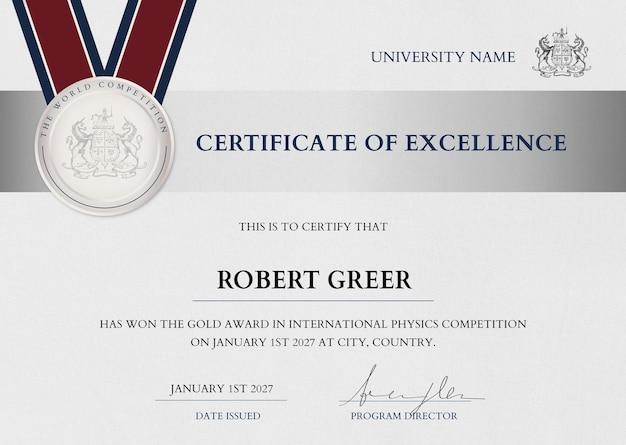 Profesjonalny szablon certyfikatu nagrody w srebrnym eleganckim designie