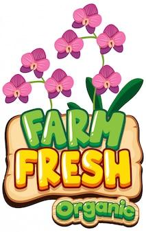 Projekt czcionki dla farmy świeżych słów z fioletową orchideą