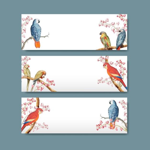 Projekt etykiety tytułowej papugi