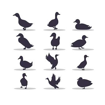 Projekt ilustracji wektorowych sylwetka kaczki