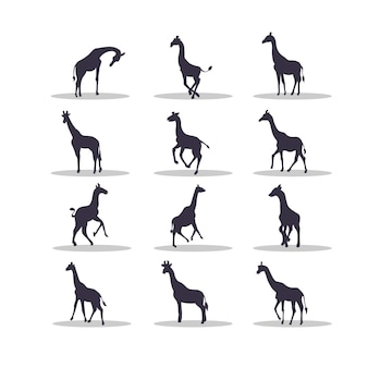 Projekt ilustracji wektorowych sylwetka żyrafy
