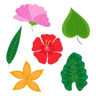 Projekt kolekcji liści i kwiatów tropikalnych