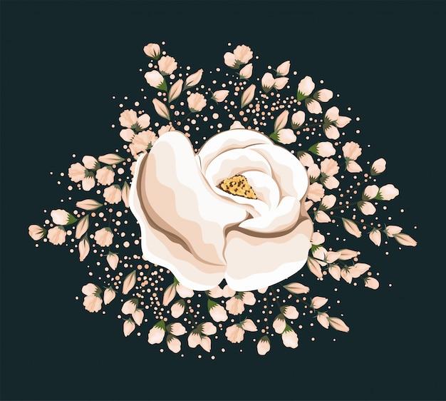 Projekt malowania kwiatów białej róży, naturalny kwiatowy ornament roślinny dekoracja ogrodowa i ilustracja motywu botanicznego