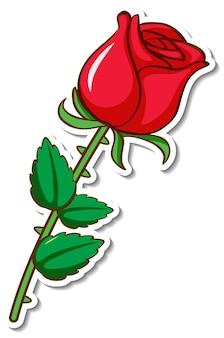 Projekt naklejki z czerwonym kwiatem róży na białym tle