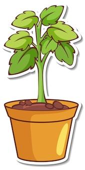 Projekt naklejki z rośliną w doniczce na białym tle