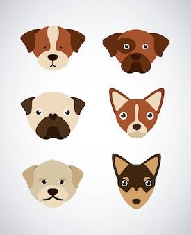 Projekt psa