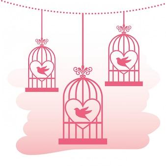 Projekt ptaki miłości