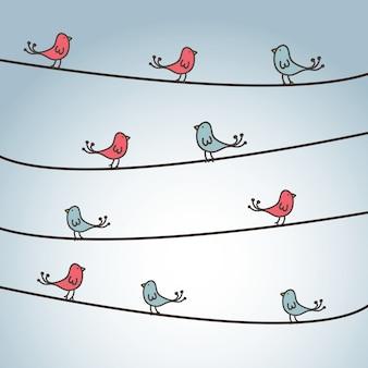 Projekt ptaków