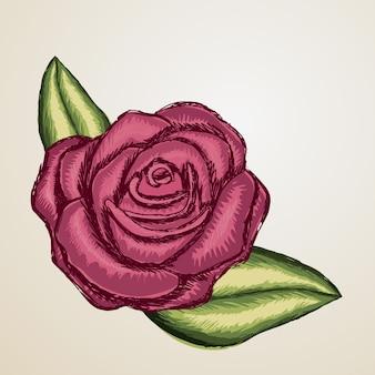 Projekt rose