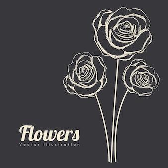 Projekt róż