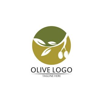 Projekt szablonu logo oliwy z oliwek