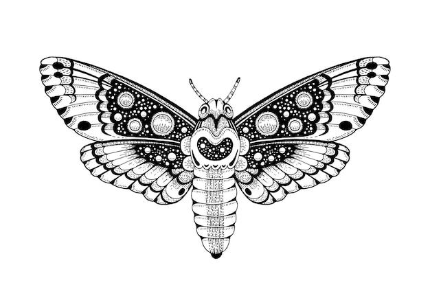 Projekt szkicu niebiańskiego okultystycznego księżyca ćma tatuaż