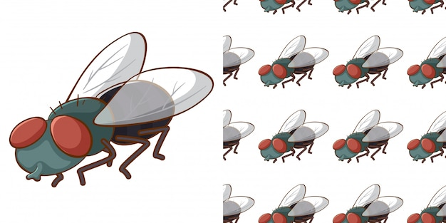 Projekt z bezszwowym wzorem muchy domowej