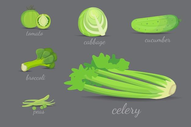 Projekt zielonych warzyw. ilustracja kreskówka zdrowych naturalnych świeżych roślin.