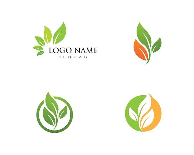 Projektowanie logo liść drzewa wektor