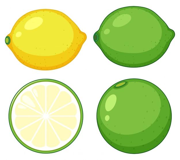 Prosta cytrus owoc na białych backgrouns