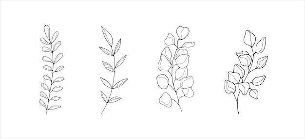 Proste ilustracje botaniczne grafika liniowa minimalistyczne elementy projektu elegancka sztuka roślinna