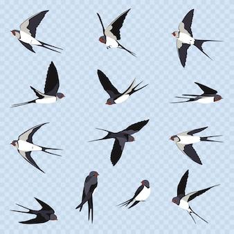 Proste jaskółki na jasnoniebieskim przezroczystym tle. trzynaście latających jaskółek w stylu cartoon. latające ptaki w różnych widokach.