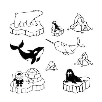 Proste rysunki doodle przedstawiające mieszkańców polarnych - eskimosa, niedźwiedzia, narwala, orkę, maskonura i morsa.