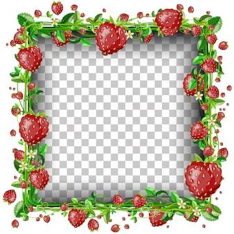 Prostokąt szablon transparent truskawka plus dodatkowe małe truskawki.