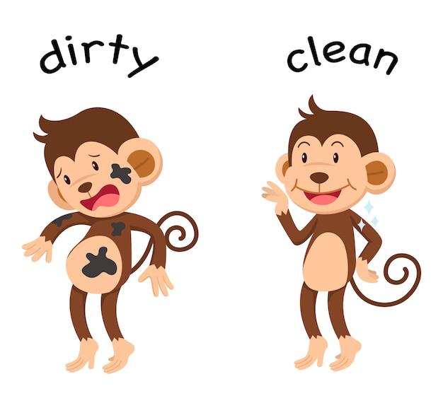 Przeciwne słowa są brudne i czyste