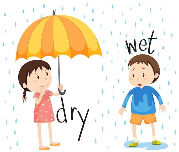 Przeciwny przymiotnik suchy i mokry