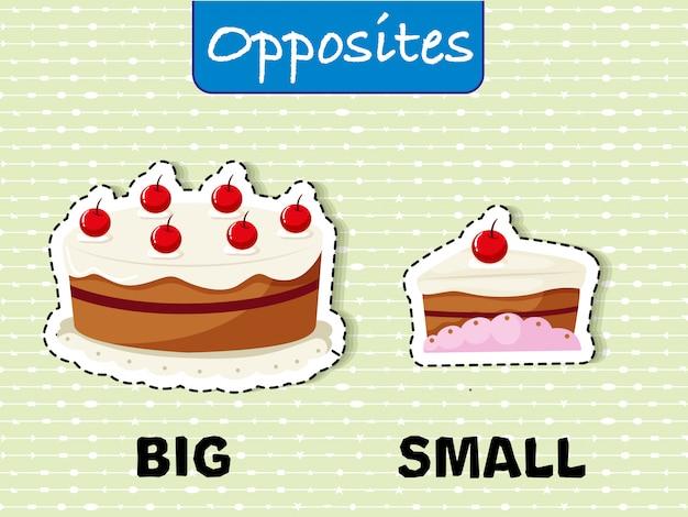 Przeciwstawne słowa dla dużych i małych