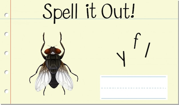 Przeliteruj angielskie słowo fly