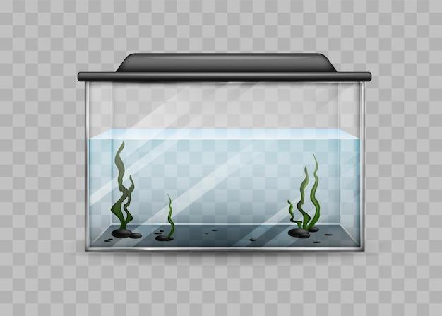 Przezroczyste akwarium z szablonem na białym tle wody i alg.