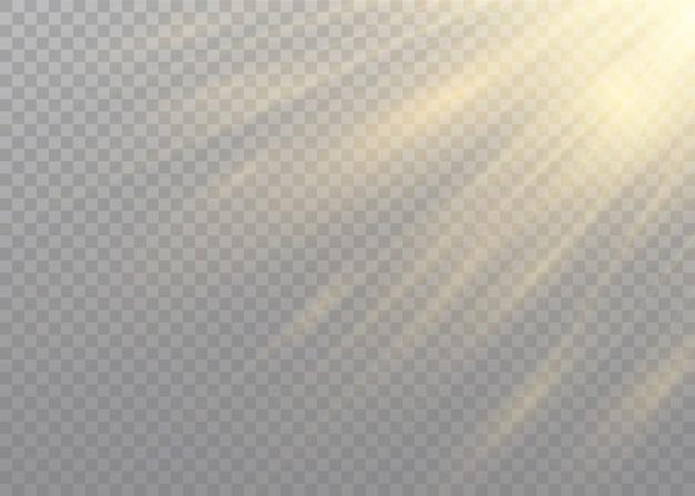 Przezroczyste światło słoneczne specjalny efekt lampy błyskowej. przednia lampa błyskowa. rozmycie w świetle blasku.