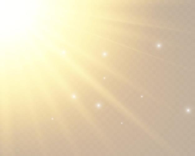 Przezroczyste światło słoneczne specjalny efekt lampy błyskowej.