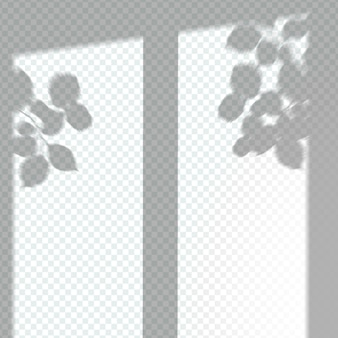 Przezroczysty efekt nakładki na okno
