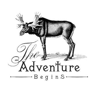 Przygoda rozpoczyna się wektor logo
