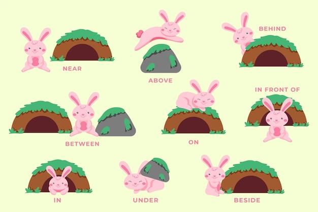 Przyimki angielskie z ilustracją króliczka