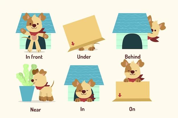 Przyimki angielskie z psem