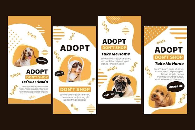 Przyjmij kolekcję opowiadań z instagrama dla zwierząt domowych