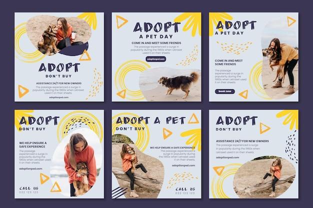 Przyjmij kolekcję postów na instagramie dla zwierząt