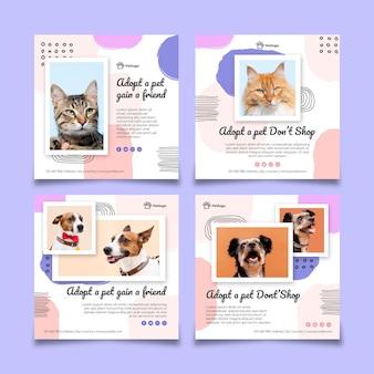 Przyjmij posty na instagramie dla zwierzaków