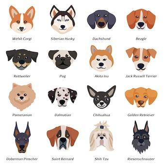 Psy rasowe twarze zestaw ikon