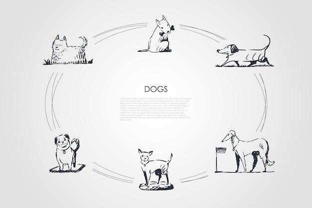 Psy siedzące na trawie koncepcja zestaw ilustracji
