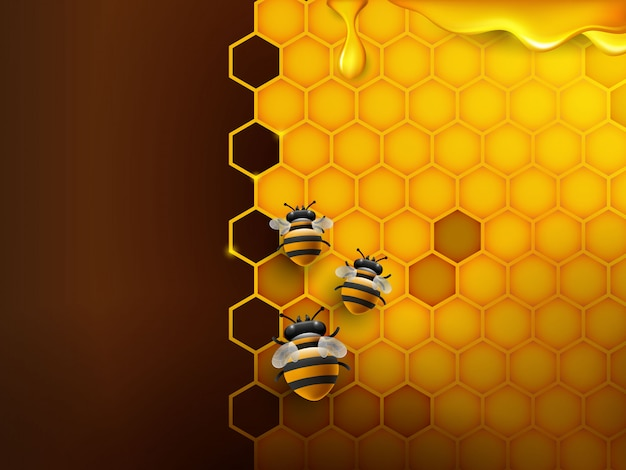 Pszczoła i plaster miodu w kolorze pomarańczowym