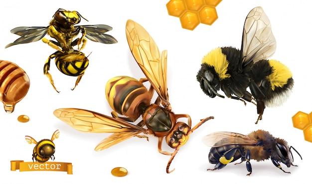 Pszczoła, trzmiel, osa, szerszeń. 3d realistyczny zestaw ikon