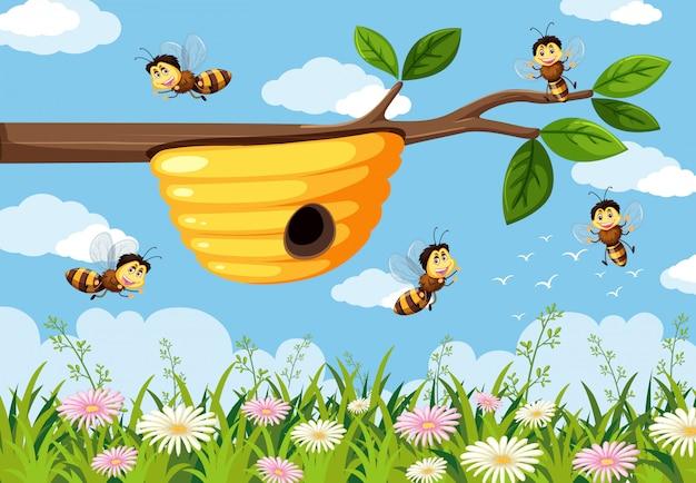 Pszczoła w tle przyrody