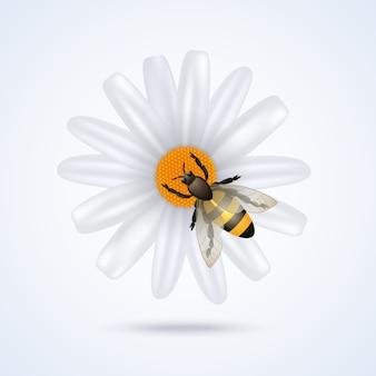 Pszczoła z kwiatem