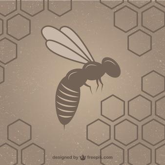 Pszczoła z plastra miodu tle szablonu