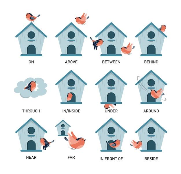 Ptak i budka dla ptaków, nauka przyimka na białym tle. edukacja przedszkolna