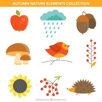 Ptak na gałęzi z innymi elementami przyrody