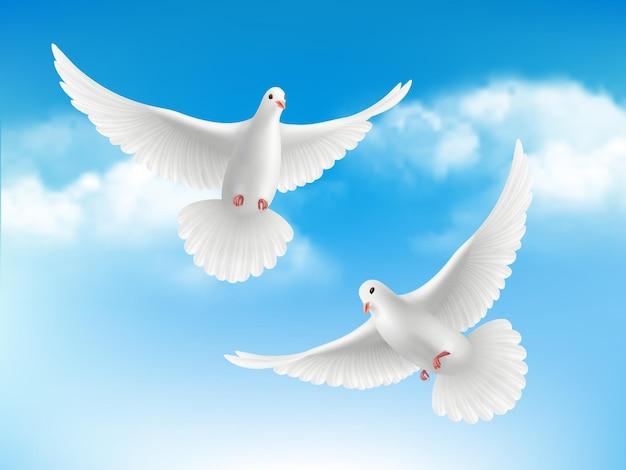 Ptak w chmurach. latające białe gołębie w koncepcji spokojnej religii błękitne niebo