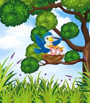 Ptak w tle przyrody
