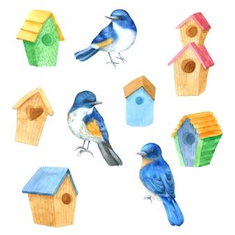 Ptaki dom akwarela ręcznie rysowane malowane na projekt